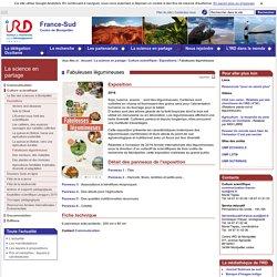 Fabuleuses légumineuses / Expositions / Culture scientifique / La science en partage / Montpellier / IRD - Sites de représentation / IRD - France Sud