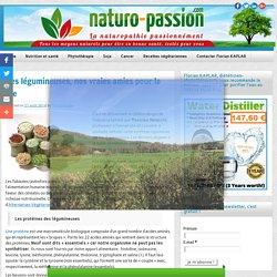 Les légumineuses, nos vraies amies pour la vie - Naturo-Passion.com