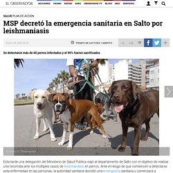 Emergencia, Inundaciones, Leishmaniasis, Ministerio de Salud Pública, Perro, perros, Salto