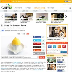 22 Uses for Lemon Peels (Page 5)