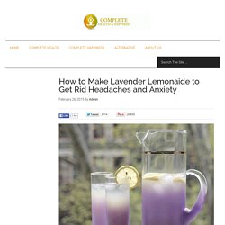 How to Make Lavender Lemonaide to Get Rid Headaches and Anxiety