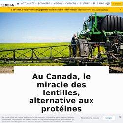 Au Canada, le miracle des lentilles, alternative aux protéines animales