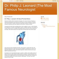 The Most Famous Neurologist: Dr. Philip J. Leonard :All About Pinched Nerve