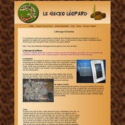 Le Gecko Léopard - Élevage de grillons et vers de farine
