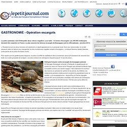 GASTRONOMIE - Opération escargots