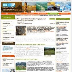 IRD -OCT 2012- Étudier l'écologie des rongeurs pour prévenir la leptospirose
