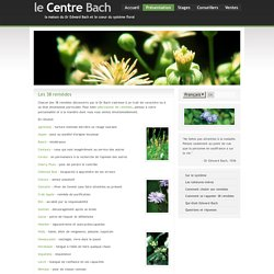 Les 38 fleurs du Dr Bach