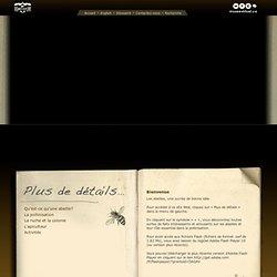 La vérification des ruches (outils de base)