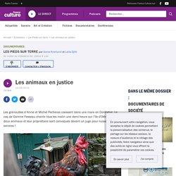 Les animaux en justice