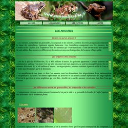 Article 10 : Les grenouilles