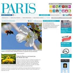 Les arbres et le miel de Paris