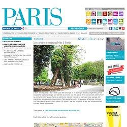 Les arbres remarquables à Paris