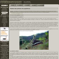 Les articles de REVELATEUR.COM.
