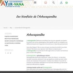 Les bienfaits de l'Ashwagandha - Blog