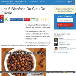 Les 5 Bienfaits Du Clou De Girofle.