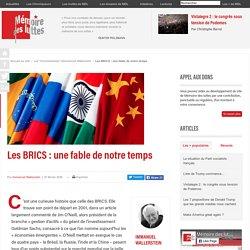 Les BRICS : une fable de notre temps