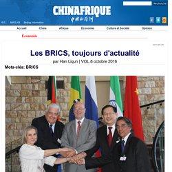 Les BRICS, toujours d'actualité