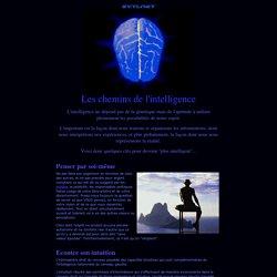 Les chemins de l'intelligence