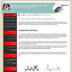 2. Les cinq molécules impliquées - Quels sont les bienfaits du rire sur notre organisme ?