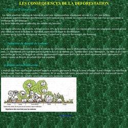 II/ LES CONSEQUENCES DE LA DEFORESTATION