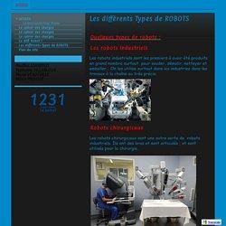 Les différents Types de ROBOTS - avesnellestechno12c33ga