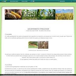 Les différents types d'OGM - Exposé sur les OGM
