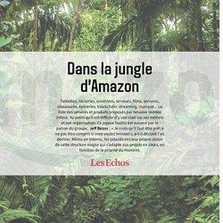 Les Echos – Dans la jungle d'Amazon