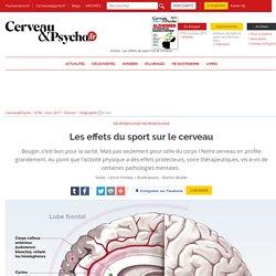 Les effets du sport sur le cerveau