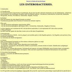 04 Les entérobactéries.