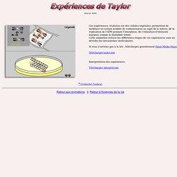 Les expériences de Taylor