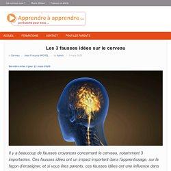 Les 3 fausses idées sur le cerveau