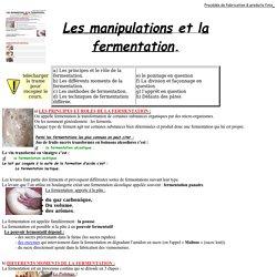 Les fermentations