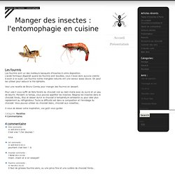 Entomophagie