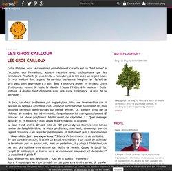 LES GROS CAILLOUX