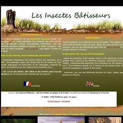 Les insectes bâtisseurs