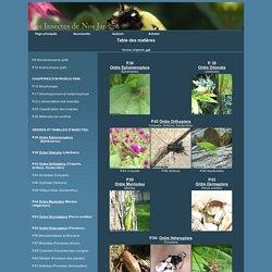 Les Insectes de Nos Jardinst