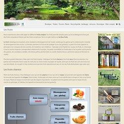Les Jardins du Gué - Les fruits -