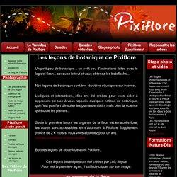 Les leçons de botanique de Pixiflore.