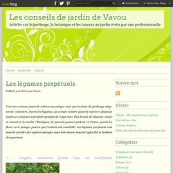 Perpetual vegetables - garden tips Vavou