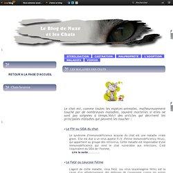 LES MALADIES DES CHATS - Le blog de Nuxe et les chats
