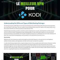 Les Meilleurs VPN