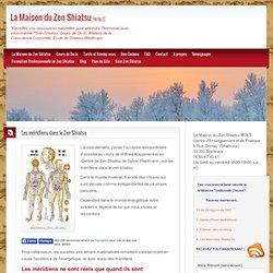 Les méridiens dans le Zen Shiatsu