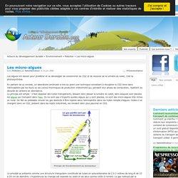 Les micro-algues, l'utilisation des micro-algues