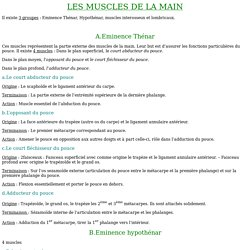 LES MUSCLES DE LA MAIN