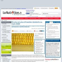 De plus en plus d'insectes résistants au maïs OGM