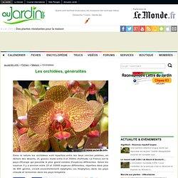 Les orchidées, généralités