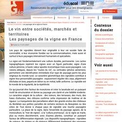 Les paysages de la vigne en France