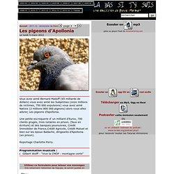Les pigeons d'Apollonia