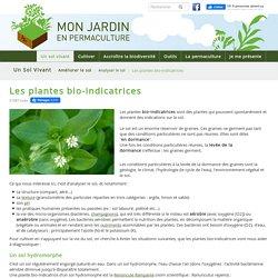 Les plantes bio-indicatrices - monjardinenpermaculture.fr