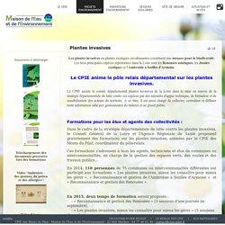 Les plantes Invasives